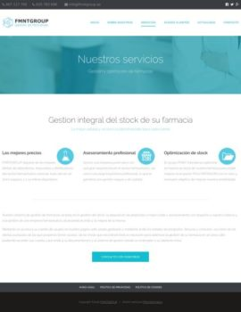 fmnt-servicios